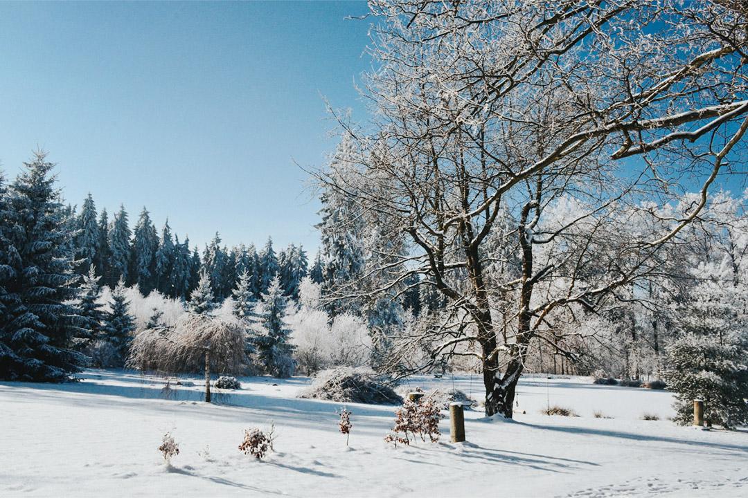 Wypoczynek zimowy w agroturystyce na Dolnym Śląsku